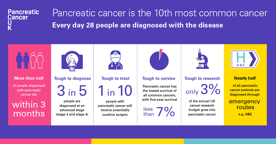 Pancreatic cancer statistics infographic for Instagram